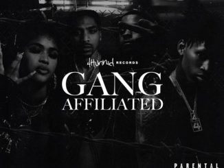 YG, Day Sulan & D3szn 4hunnid Presents: Gang Affiliated Album Zip Download