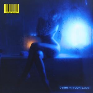 Snoh Aalegra – Dying 4 Your Love