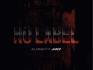 Almighty Jay – No Label