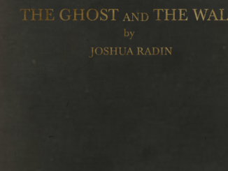 Joshua Radin – The Ghost and the Wall