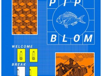 Pip Blom – It Should Have Been Fun