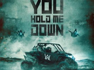 Alan Walker Don't You Hold Me Down Mp3 Download