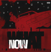 DC The Don WHAT NOW? Mp3 Download