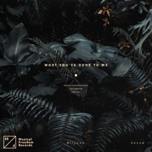 KREAM & Millean. What You've Done To Me Mp3 Download Audio 320kbps Music