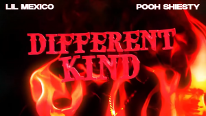 Lil Mexico & Pooh Shiesty Different Kind Mp3 Download Audio