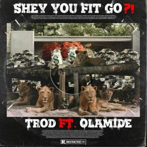 Mp3 Trod Shey You Fit Go? Ft. Olamide Download